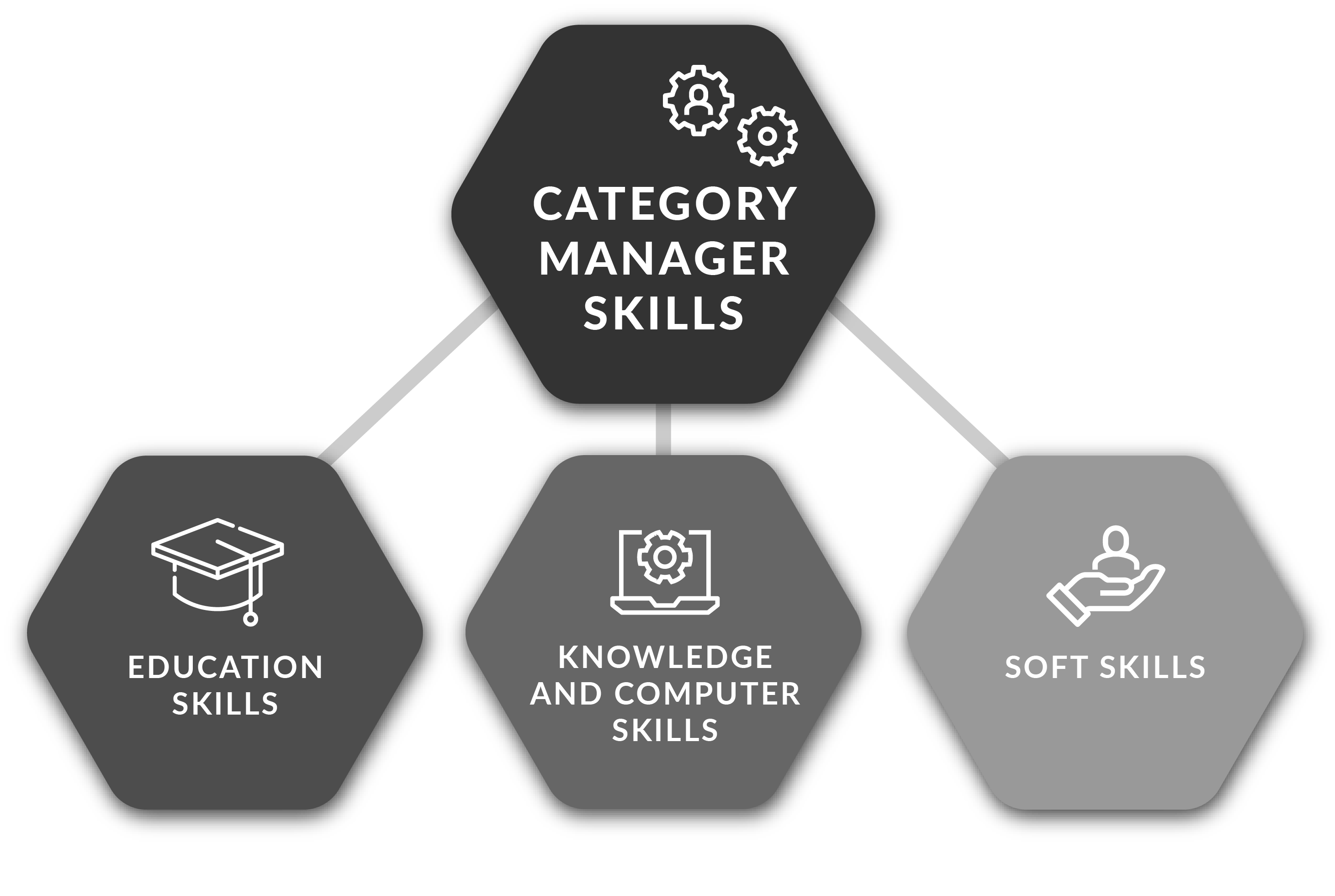 Category+Manager+Skills
