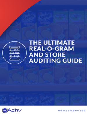 eBook_icons-The-Ultimate-real-o-gram-and-store-auditing-guide.1